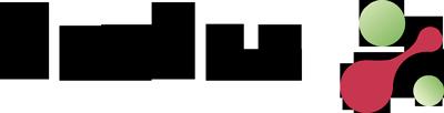 Hudisa Logo
